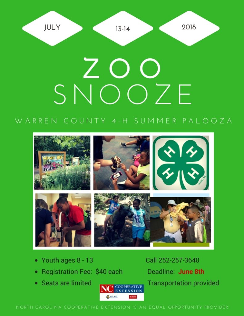 Zoo Snooze flyer