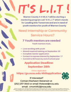Cover photo for Recruiting Youth Mentors for 4-H LIT