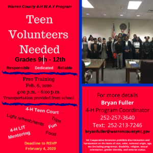 Cover photo for Youth Volunteers Needed