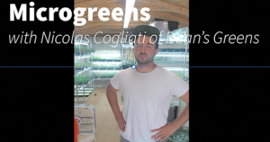 Image of Nic Cogliati in a greenhouse full of microgreens
