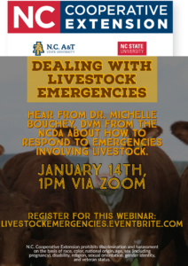 Cover photo for Dealing With Livestock Emergencies